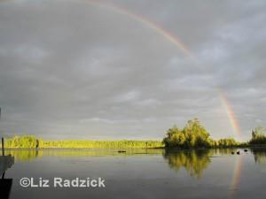 Rainbow copywrited_edited-1